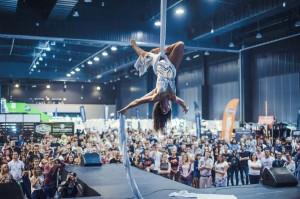 1633548 Pokaz-akrobatyki-powietrznej-Ania-Filipowska (1)